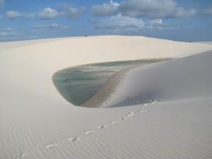 Cientos de estas lagunas salpican el desierto. Solo desaparecen en la temporada seca