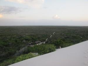 Foto del camino de arena a través del cual se accede a los Leoncois