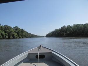 Navegando el Río Preguicas