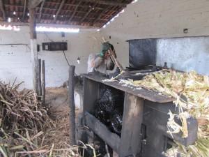 El comienzo del proceso de producción de chachaca: la molienda de la caña de azúcar, para luego comenzar con el destilado del jugo que se obtiene. Este procedimiento de destilado se hace mediante alambiques